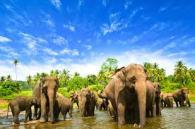 sri-lanka-destination-sur-mesure3
