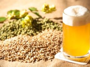 brassage-biere-artisanale