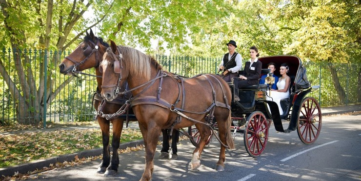 blog-mariage-toulouse-sud-ouest-transport-ecolo