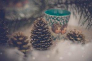 shooting-inspiration-noel-waiting-for-santa